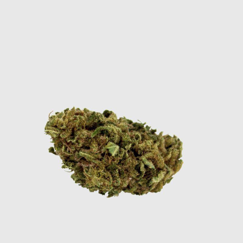 Cannabis Light Cbweed Bubblegum CBD EU