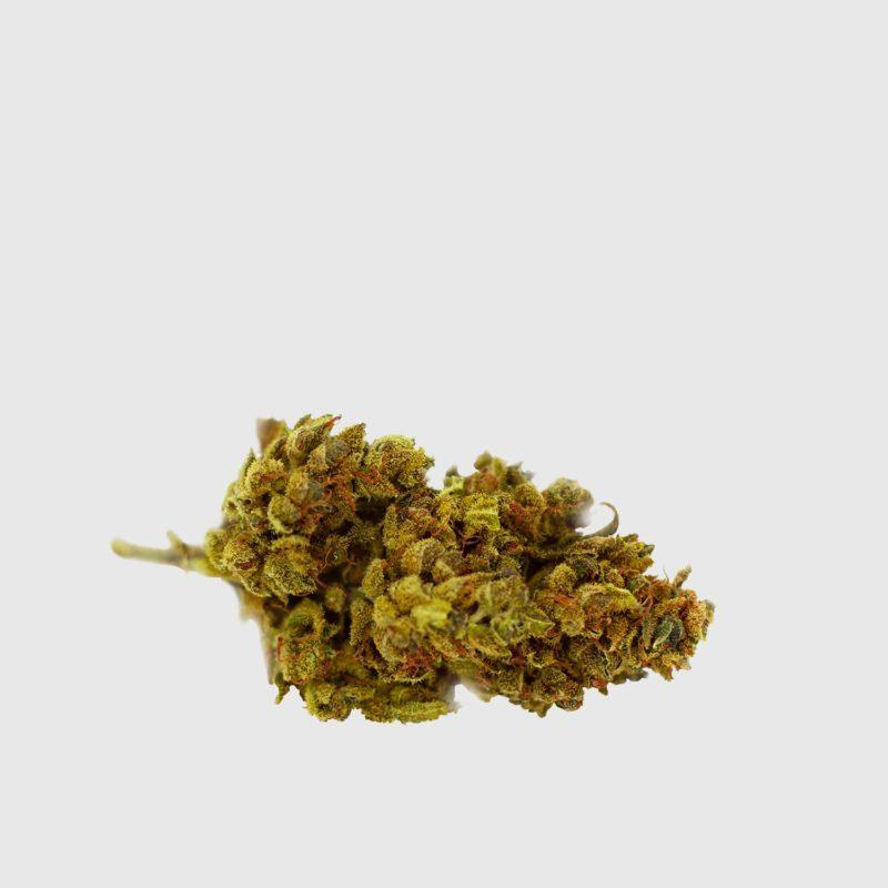 Cannabis Light Cbweed Mango Haze CBD