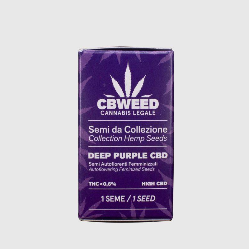semillas-deep-purple-cbd