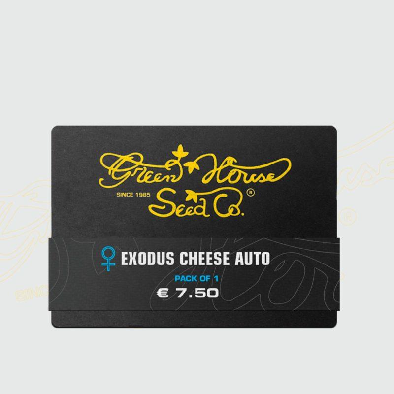 exodus-cheese-auto-1-semillas