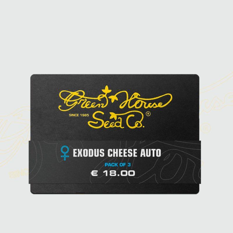 exodus-cheese-auto-3-semillas